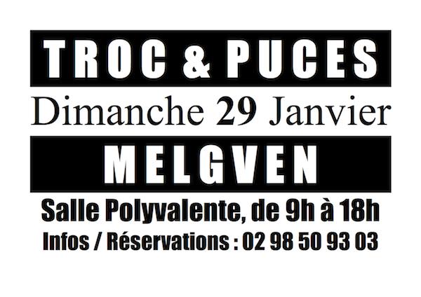 Affiche troc et puces talenka 2012